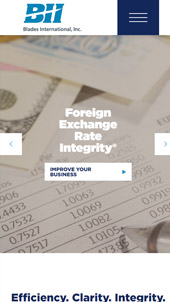 Foreign Exchange Rate │Web Design │ UI